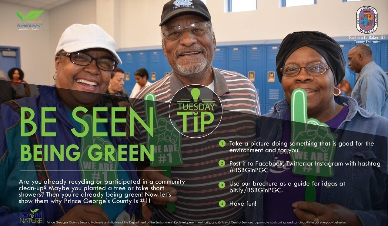Be Seen Being Green Tuesday Tip 62618