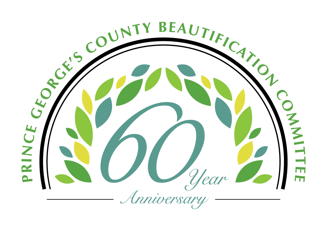 60th-Anniversary-logo